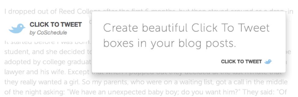 blog plugins